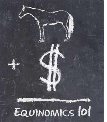 With Equinomics 101, you get an easy-to-read book and simple-to-set-up software. You can use Equinomics 101 for things as simple as: a simple record and book keeping system, a check register system, or even an easy-to-use contact management system.